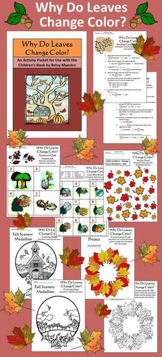 Why Do Leaves Change Color Activity Packet: This colorful activity packet compliments the children's book, Why Do Leaves Change Color, by Betsy Maestro. Contents include: * One 12-question reading comprehension quiz * One leaf identification worksheet * One time sequencing worksheet * One math coloring worksheet * One wreath construction craft * Two Fall coloring sheets * Answer keys to all