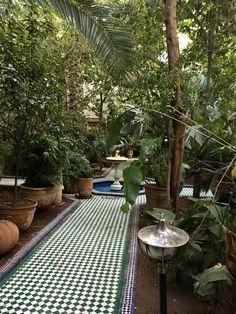Ryad, Marrakech, Maroc.