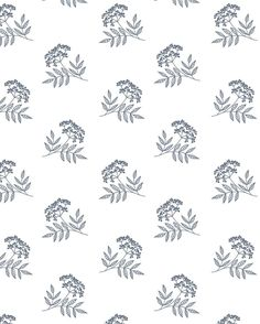 Elderberry pattern made from the sketch I shared a few days ago.