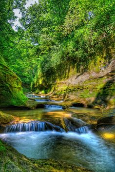 Ravine / Gorge in Indiana #Indiana