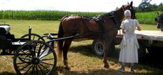Amish Info Articles