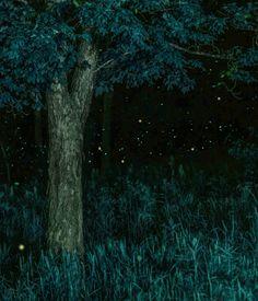 fyeahfantasticalthings:    splendiferoushoney:  time lapse fireflys by Vincent Brady