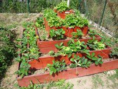 Vysoké záhony na jahody Plants, Diy, Gardening, Heart, Gardens, Composters, Bricolage, Garten, Diys