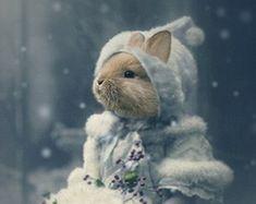 Bonnie  Vintage Bunny 5x7 Print  Anthropomorphic
