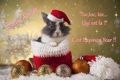 Menu pour une merveilleuse année. Quelques éclats de rire, une grande cuillère de gentillesse, quelques grains de tendresse, une bonne dose d'humour, et une poignée d'amour, un grand bol de santé. Saupoudrer de réussite. Faire mijoter en douceur. Servir avec joie tout au long de l'année sans modération. Happy New Year Message, Animals And Pets, Christmas Time, Rabbit, Teddy Bear, Messages, Grand Bol, Menu, Hair Style