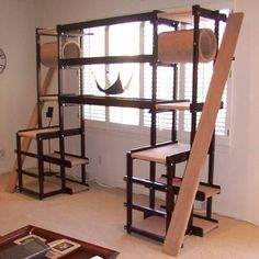 diy cat habitat - Google Search