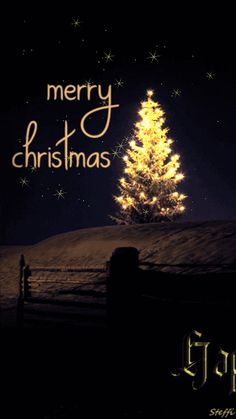 This platform of Bollywood wanted to wish each and everyone a very Happy and beautiful Merry Christmas. Send Merry Christmas wishes to your friends and family. Merry Christmas Greetings Quotes, Merry Christmas Images, Christmas Wishes Messages, Merry Christmas And Happy New Year, Retro Christmas, Christmas Pictures, Christmas Time, Christmas Cards, Christmas Snoopy