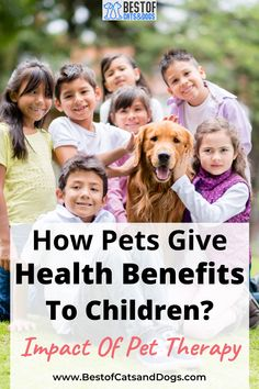 Children Who Grow Up In Homes With Pets Have Less Risk Of Developing Common Allergies And Asthma. Kids With Pets Get Outside More—Go For Walks, Run And Play—And Enjoy All The Associated Health Benefits. Children With Pets Tend To Have Greater... Read More Here! #HealthBenefitsOfHavingPets #ParentingHacks #ChildrenAndPets #BestPetsForKids Funny Cute Cats, Silly Cats, Cute Cat Gif, Funny Dogs, Dog Health Tips, Dog Health Care, Talking Cat Video, Adorable Animals, Funny Animals