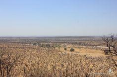 View from #Sinamatela at #DrySeason. #Hwange #Zimbabwe #TSS
