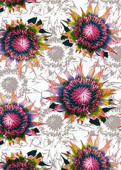 UK based Ayme Fitzgerald, Floral Floral wallpaper in Blanc