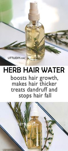 Itchy scalp, hair fall, hair loss, hair breakage etc. are some of the major hair problems that affects at least 3 out of 5 people. If you suffer from there hair care HERB WATER FOR ITCHY SCALP AND HAIR LOSS Make Hair Thicker, How To Make Hair, Natural Hair Care, Natural Hair Styles, Natural Beauty, Natural Hair Problems, Natural Red, Natural Oils, Beauty Care
