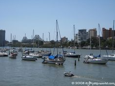 Boats at anchor in the Brisbane river. With the Story bridge in the background. Brisbane River, Getting Out, Us Travel, Botanical Gardens, San Francisco Skyline, Anchor, Boats, New York Skyline, This Is Us
