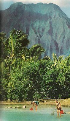 Hawaii 1959