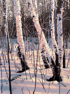 Sixcolor linocut print of white birch trees in by williamhays, $265.00