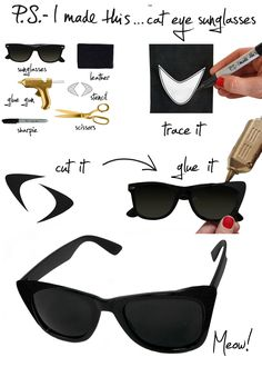 DIY cat sunglasses