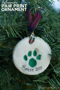 Want to include your cat in the Christmas celebration? This DIY keepsake paw print ornament is one way you can do just that! #ad #SeasonsTreatings