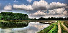 Tra nuvole e #risaie. (Pic: Leonetto Strambi) #Lomellina #acqua #paesaggi #turismo #riso #Expo2015