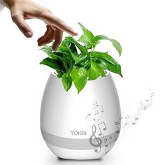 Music Flower Pots,LED Flowerpot Night Light Smart Touch Music Plant Lamp Rechargeable Wireless Festival Gift,Play Piano on a Real Plant with Bluetooth Speaker-Music Box Dancer (White) Music Speakers, Bluetooth Speakers, Portable Speakers, Vase Haut, Wireless Festival, Music Flower, Portable Projector, Pot Lights, Speakers