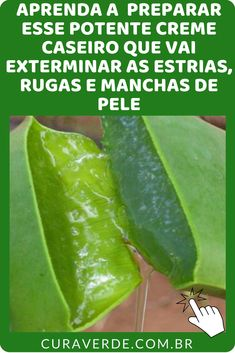 Natural DIY cream for wrinkles around mouth - Indiscreet B Aloe Vera Piel, Hair Care, Herbs, Fruit, Beauty Makeup, Plant Leaves, How To Make, Rapunzel, Ideas Para