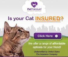 Discount Insurance - Discount Insurance