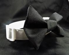 White Bow Tie, White Collar, Custom Dog Collars, Leather Lace Up Boots, Dog Wedding, White Dogs, Heavy Metal, Things To Come, Bows