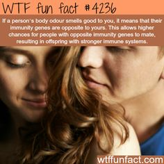 If a person's body odor smells good to you, it means that their immunity genes are opposite to yours. This allows higher chances for people with opposite immunity genes to mate, resulting in offspring with stronger immune systems - WTF fun facts Wtf Fun Facts, True Facts, Funny Facts, Random Facts, Crazy Facts, Uber Facts, Random Stuff, Funny Stuff, The More You Know