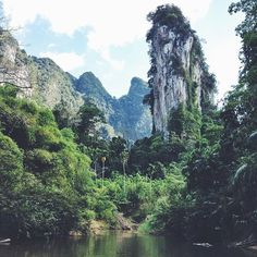 Der Khao Sok Nationalpark im Süden von Thailand (80km nördlich von Phuket) ist eines der letzten ursprünglichen Regenwaldgebiete in Südostasien. Hier leben noch wilde Elefanten, Gibbons oder Nashornvögel und die Rafflesia, die größte Blume der Welt. 🌼🐒🐘 Hier könnt ihr in Baumhäusern oder schwimmenden Hütten auf einem See übernachten und von dort zu Fuß oder per Boot/Kajak zu Erkundungstouren in den Dschungel aufbrechen. || Bild & Reisetipp: @blackdotswhitespots || Und jetzt ihr! Was ist…