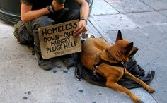 Homeless with his forever friend. Please don't turn away.make a pledge to yourself.give up something this week.your favorite coffee or a lunch.and give that money to a homeless person! Homeless Dogs, Homeless People, Helping The Homeless, Puppy Backpack, Animal Bag, Network For Good, Rottweiler Puppies, Save Animals, Good Cause