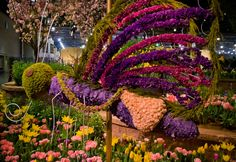 If you don't know about the Flower Show it is the largest & oldest indoor garden show in the world and is held at the Convention Center every year. Description from phillyshomes.com. I searched for this on bing.com/images