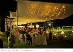 Craig & Carolyn {Under the Stars}  click on link for gorgeous wedding boards!