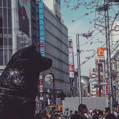 #hachiko (ハチ公) #shibuya (渋谷) #tokyo (東京) #japan (日本) - #gf_japan #ig_japan #ig_japanese #ig_japanese #igersjapan #instagramjapan #icu_japan #ig_asia #loves_nippon #wow_nihon #wu_japan #ig_nippon #ig_nihon #jp_gallery #cooljapan #japanfocus #bestjapanpics #ptk_japan #japan_daytime_view #lovers_nippon #visitjpn #japanawaits #daily_photo_jpn #photo_jpn #japanmagazine #japanigram #tokyo_bigcity