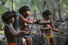 Yawalapiti tribe children attempt to spear fish in the Xingu National Park.