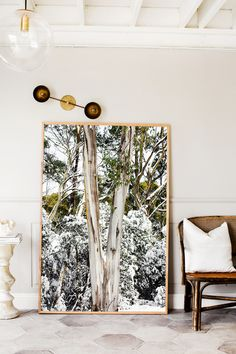 """""""Snow Trunk"""" Photographic Print by Kara Rosenlund Inspiration Wall, Interior Inspiration, Home Decor Wall Art, Room Decor, Attic Master Suite, Large Photo Prints, Rustic Home Design, Photographic Prints, Decorating Your Home"""