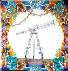 Luneta -  Johanna Basford - enchanted forest - floresta encantada - jardim secreto - secret garden - colouring book