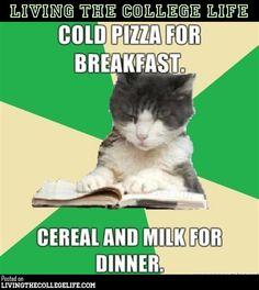 Hilarious College Meme Compilation (37 Photos)