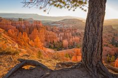 Ut Photograph - Bryce Canyon National Park Sunrise 2 - Utah by Brian Harig
