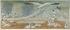 Winter Snow Geese