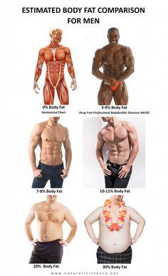 Body fat percentage comparison photographs for men