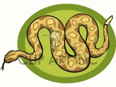 rattlesnake shilouettes and clip art | ... snake rattlesnake rattlesnakes snake16.gif clip art animals snakes