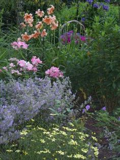 kathys garden in illinois - Flower Garden Ideas Illinois