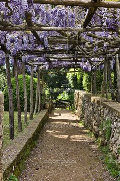 Villa Cimbrone Gardens, Ravello, Italy by Vladimir Khirman - Stock Photo