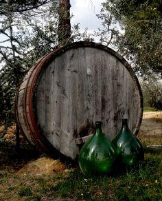 Wine Culture in Chianti - Photo by Bianca Corti