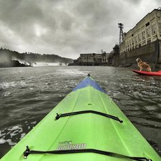 More memories from #2016: The time I paddled to one of the most powerful waterfalls in America; a juxtaposition of nature and industry on #Oregon's Willamette River. (Even Mojo the dog was impressed!) . . . #travel #outdoors #pdxnow #portland #kayak #paddling #waterworld #willamettefalls #oregoncity #adventure #waterfalls #instatravel #gopro
