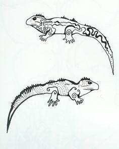 tuatara-black-and-white-drawing-a.jpg (1409×1764)