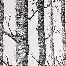 10m Rustic Forest Birch Tree Modern Minimalist Black White Woods Wallpaper Roll