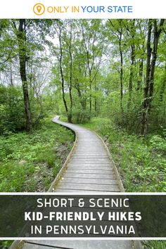 These short and easy hiking trails in Pennsylvania are under 1 mile! They're kid and family-friendly and perfect for beginner hikers. Camping And Hiking, Hiking Trails, Vacation Destinations, Vacation Ideas, Ohiopyle State Park, County Park, Beautiful Waterfalls, Months In A Year, Travel Usa