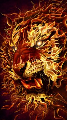Tiger of Fire iPhone Wallpaper - iPhone Wallpapers