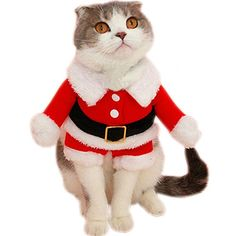 costumes for cats - Bolbove Pet Christmas Santa Claus Suit Costume for Small Boy Dogs & Male Cats Jumpsuit Winter Coat Warm Clothes (Red, Medium) * You can find more details by visiting the image link. (This is an affiliate link) Pet Halloween Costumes, Pet Costumes, Halloween Snacks, Christmas Costumes, Diy Halloween, Vintage Halloween, Christmas Clothes, Costume Ideas, Unique Animals