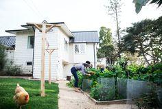 stacy bostrom photography of Outdoor Spaces, Outdoor Decor, Instagram Widget, Green Garden, Gardening, Photo Jewelry, Shed, Outdoor Structures, Blog