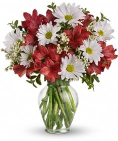 Dancing in Daisies by City Line Florist #Trumbull Florist